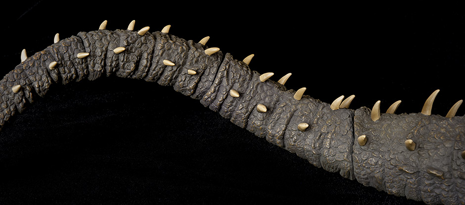 X-Plus Anguirus - close-up of tail.