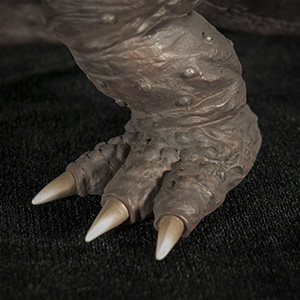 Close-up of foot.