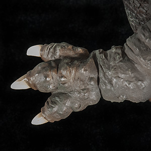Close-up of Hand.