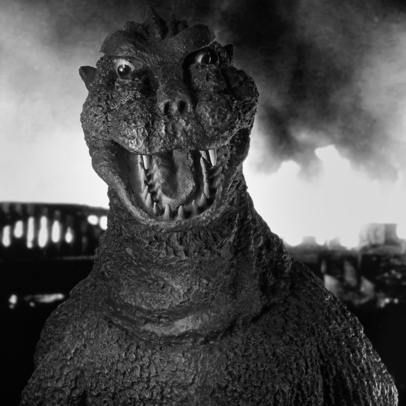 X-Plus Godzilla 1954 photo by John Ruffin.