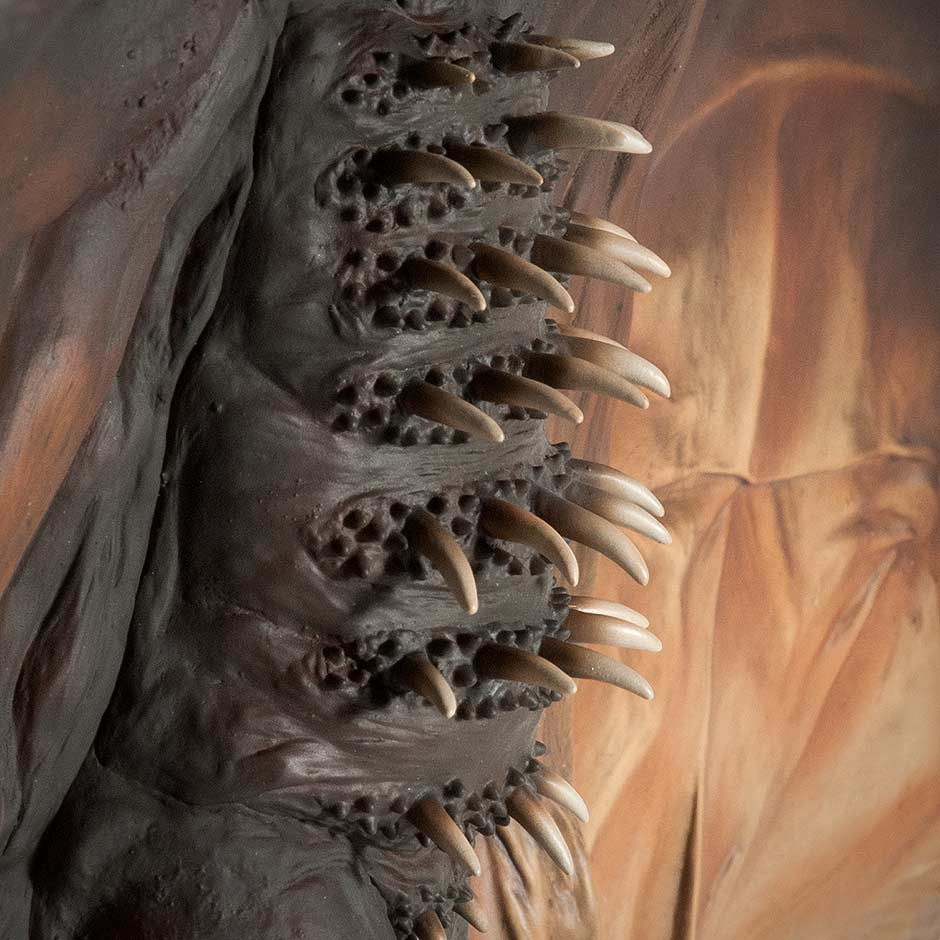 A side view of Rodan's chest spikes.